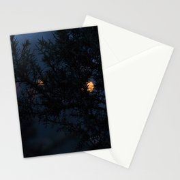 Bokeh thorns Stationery Cards