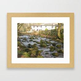 Brill Framed Art Print