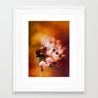 heathers Framed Art Prints featuring Impression with heathers by Jablam