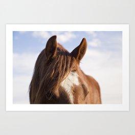 Modern Horse Print Art Print