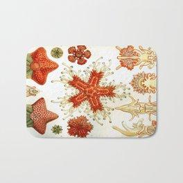 Common Starfish Drawings Bath Mat