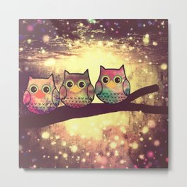 owl 69 Metal Print