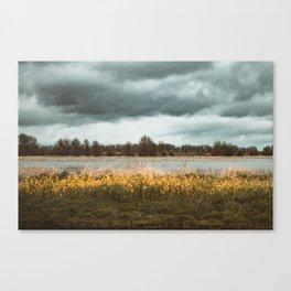 Tasting you in rain Canvas Print