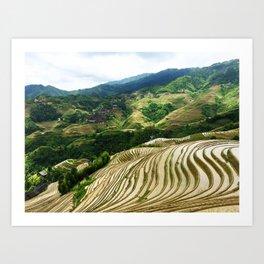 DRAGON'S BACKBONE // Longji Rice Terraces Art Print