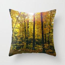 Bright Autumn Sun Throw Pillow