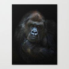 she-gorilla Canvas Print