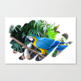 Blue Yellow Macaw. Parrot Canvas Print
