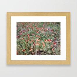 Gracefulness Framed Art Print
