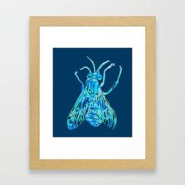 Horse Fly Framed Art Print