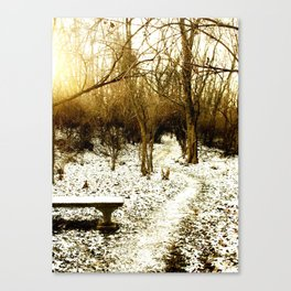 Warmth within winter Canvas Print