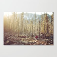 Forest Run Canvas Print