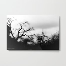 DARK FEEL Metal Print