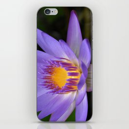 My Soul Dressed in Silence iPhone Skin