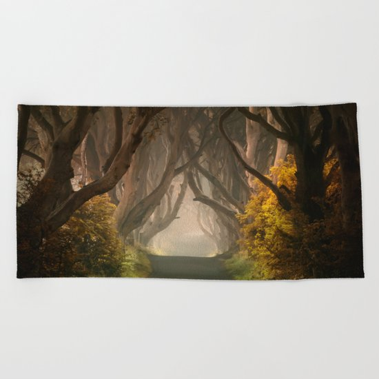 Summer's almost gone Beach Towel