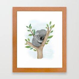Sleeping Koala Bear Framed Art Print