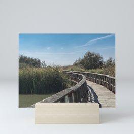 Wetlands Mini Art Print