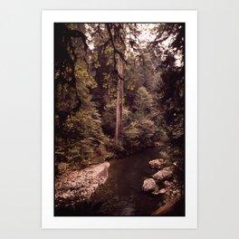 CALIFORNIA NEAR KLAMATH Art Print