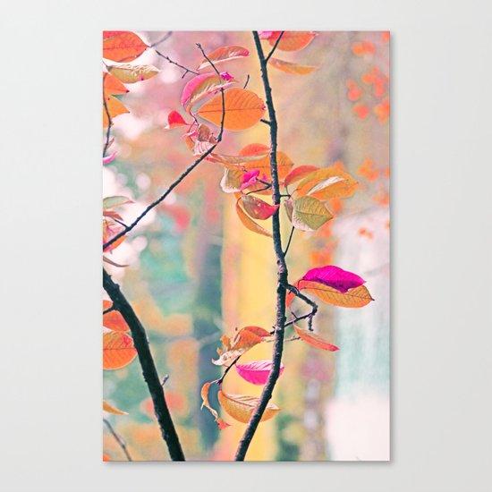 New Autumn Colours  Canvas Print