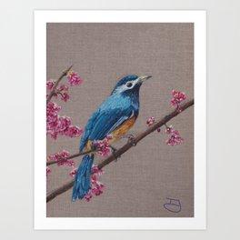 blue bird with pink blossom Art Print