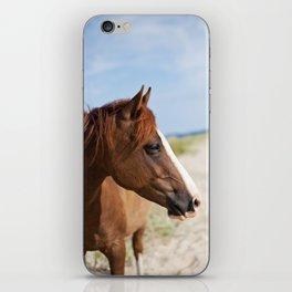 Horse ii iPhone Skin