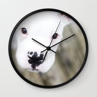 boxer Wall Clocks featuring Boxer by sara montour