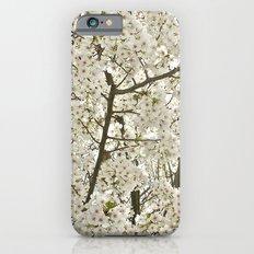 cherry blossom tree iPhone 6s Slim Case
