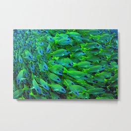 Fishies Metal Print