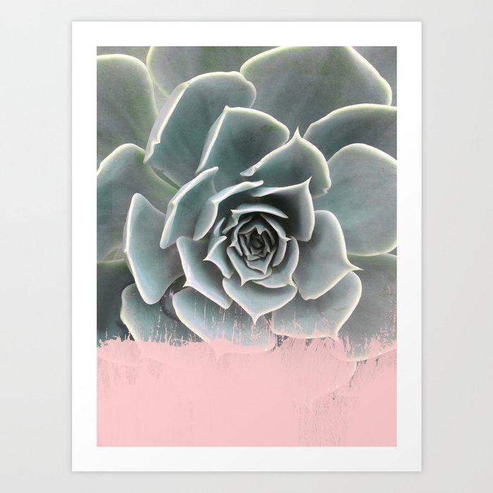 Sweet Pink Paint on Succulent Art Print