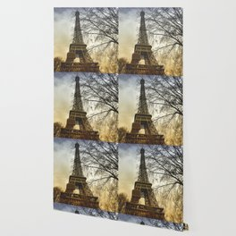 Winter sunset near the Eiffel tower in Paris Wallpaper