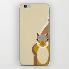 Squirrel Pattern iPhone & iPod Skin
