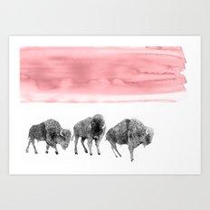 The Bison Art Print