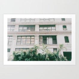 Urban Tropic Art Print