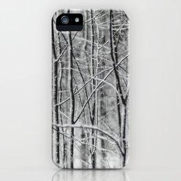 Winter gris iPhone Case