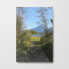 Path To The Lake Metal Print
