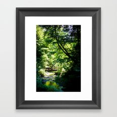 River Run Hike Framed Art Print