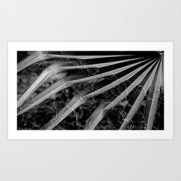 Palm Tree Noir #30 Art Print