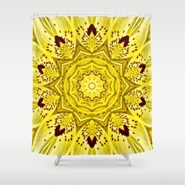 Manipura - The Chakra Collection Shower Curtain