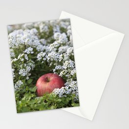 Snow White´s Apple Stationery Cards