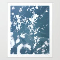 Blue Tree Shadows Art Print