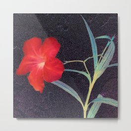Breezy Rustic Red Flower Metal Print