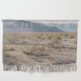 Panamint Valley Coyotes Wall Hanging