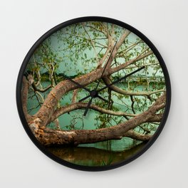 Wandering Branches Wall Clock