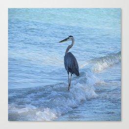 Oceans Great Blue Heron Canvas Print