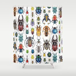 Beetle Collection Shower Curtain