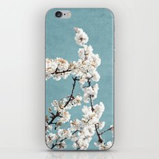 Spring 5 iPhone & iPod Skin