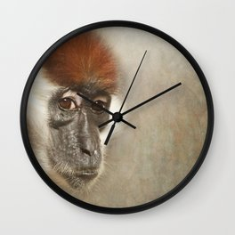 Cherry Crowned Mangabey Wall Clock