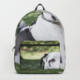 The less you give a shit, the happier you'll be. Backpack