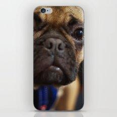 Herman iPhone & iPod Skin