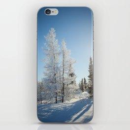 Snowy Tamaracks on a Sunny Day iPhone Skin