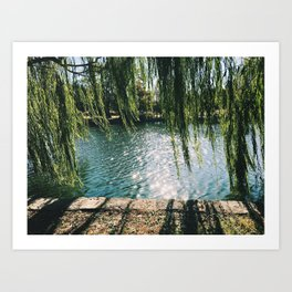 day at the pond Art Print